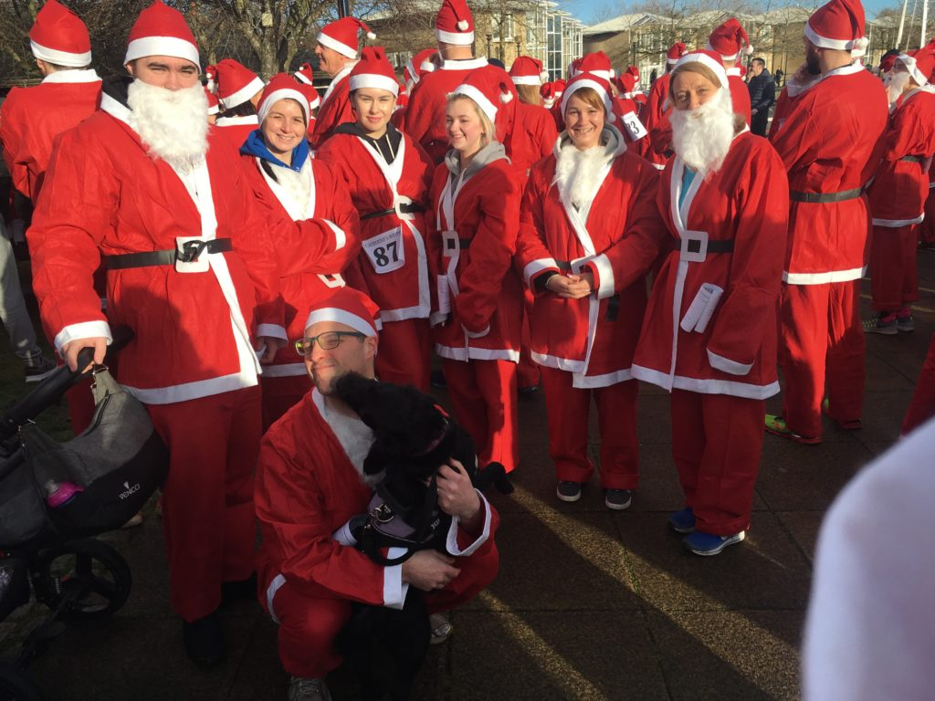 Ringtail at the start of the Santa dash